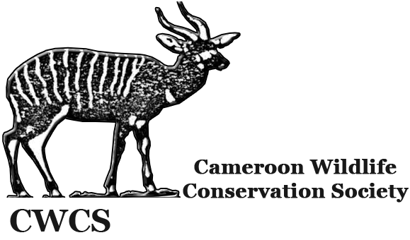 CWCS Cameroon
